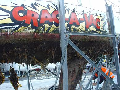 November 2008 - CRAC-A-JAC's hull looked like a mussel farm